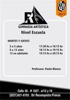 2017_gimnasia_artistica.r